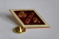 Академические значки для ВУЗов (с символикой ВУЗа)
